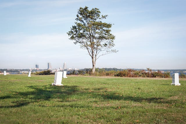 Photograph of a cut grass lawn leading to a single tree in the mid-distance. In the foreground standing evenly on the lawn are several white stone square pillars. In the far distance is a stretch of water and the shoreline . On this shoreline are three tall skyscrapers.