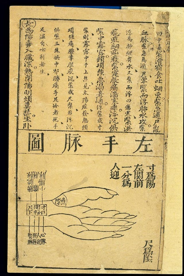 Chinese characters written on parchment on the top half of the page. An ink sketch of a left hand with labels indicating where to measure pulse.