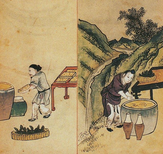 Chinese manuscript depicting images of two people preparing mung bean liquor.