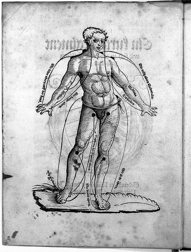 Image of old print diagram of a man with curved lines pointing to different parts of his body, indicating where to operate for bloodletting.