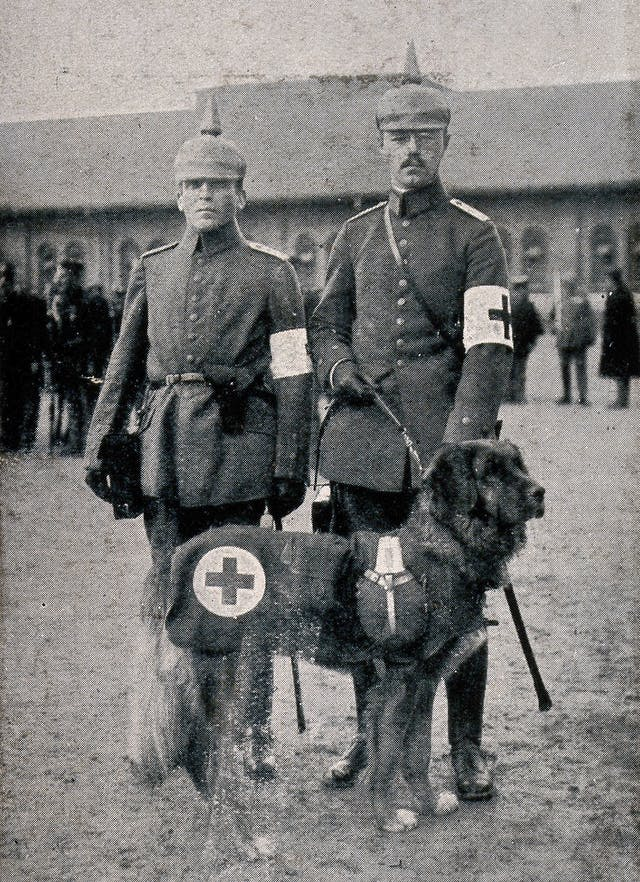 Two World War I orderlies in unifrom and a service dog from the German Red Cross