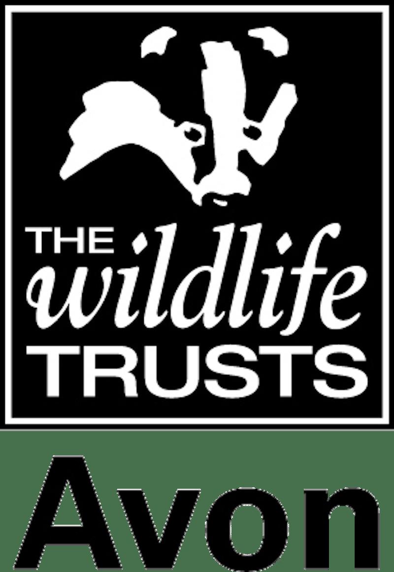 Avon Wildlife Trust Logo