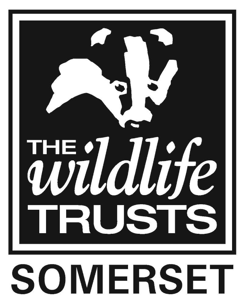 Somerset wildlife trust logo