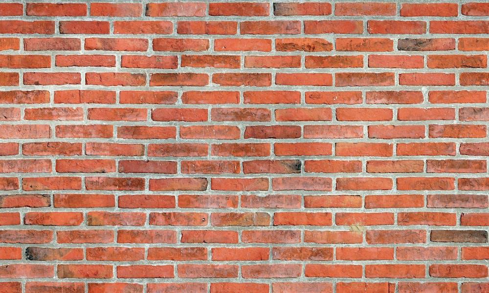 Castle Brick - Pavlov 313 - Brick Veneer