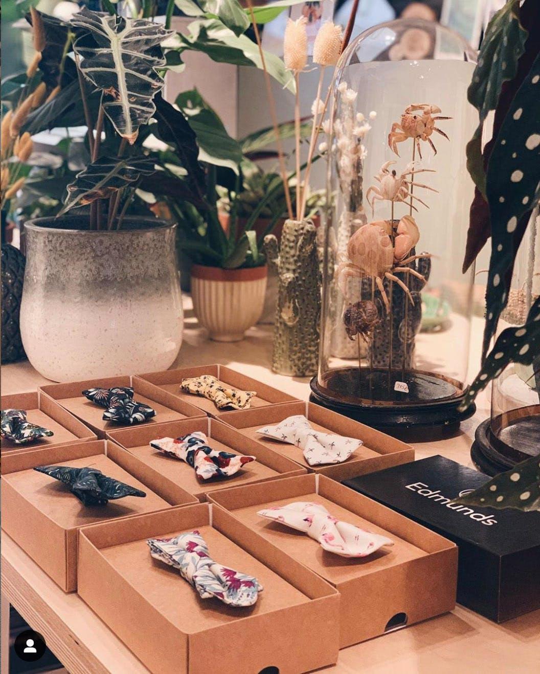 Présentation original de noeuds papillon chez Ooak Cabinet des Curiosités à Louvain-la-Neuve