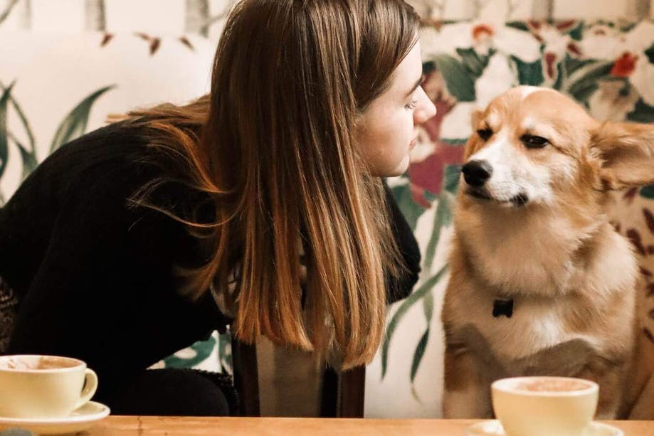 Woman talking to her pup at a dog-friendly restaurant