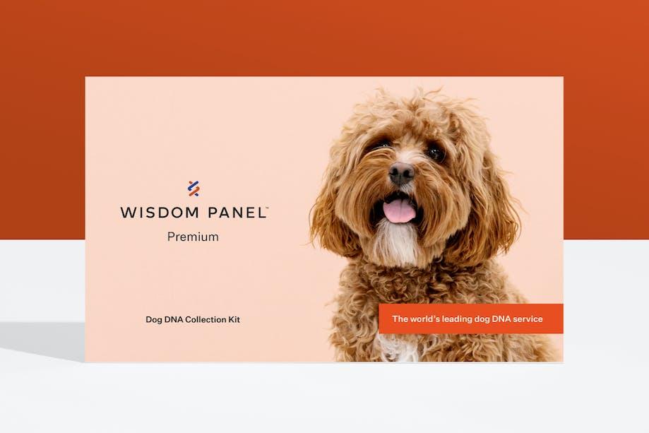 Wisdom Panel™ Premium dog DNA test