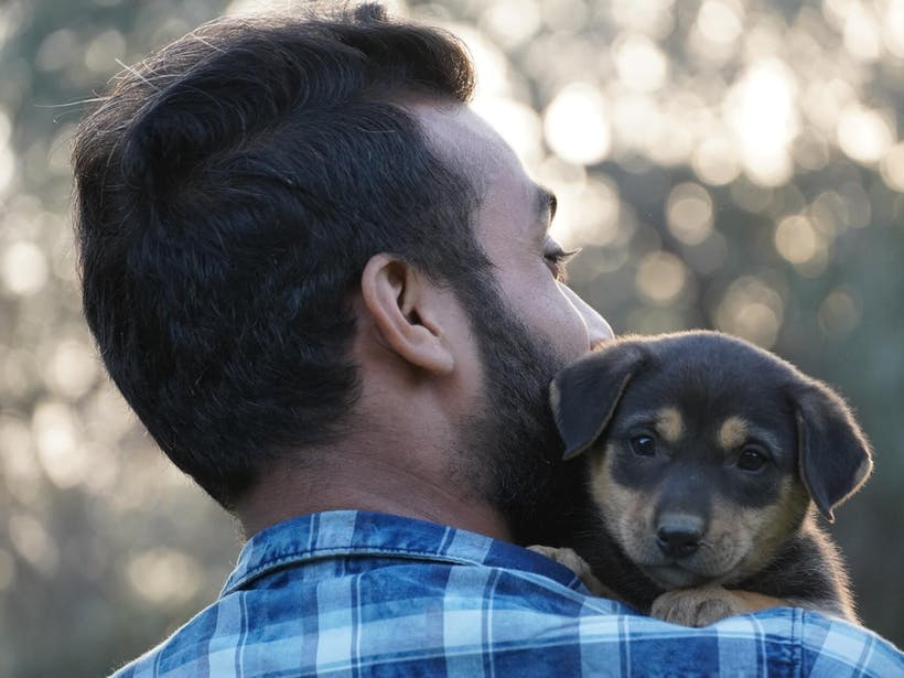 Puppy looking over a man's shoulder