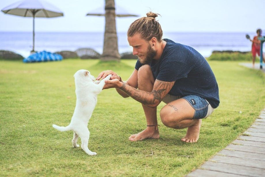 Man practicing puppy socialization with new dog outside