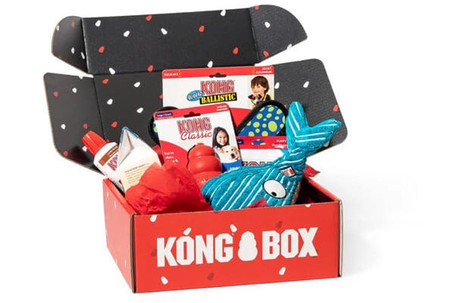 KONG Box subscription for dog toys
