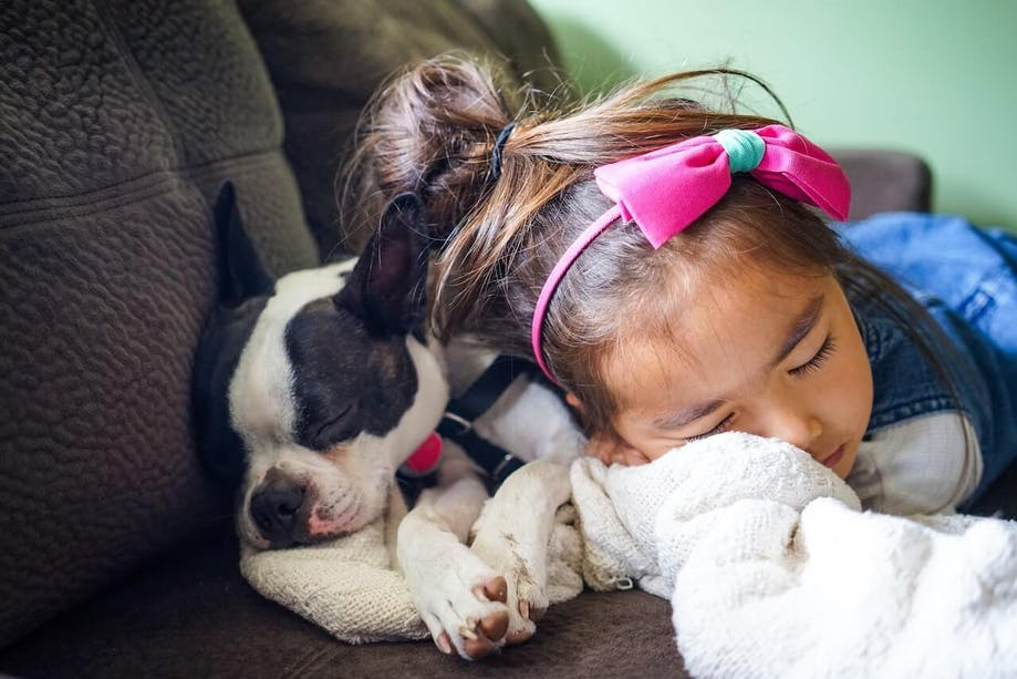 Little girl sleeping on the couch with her dog