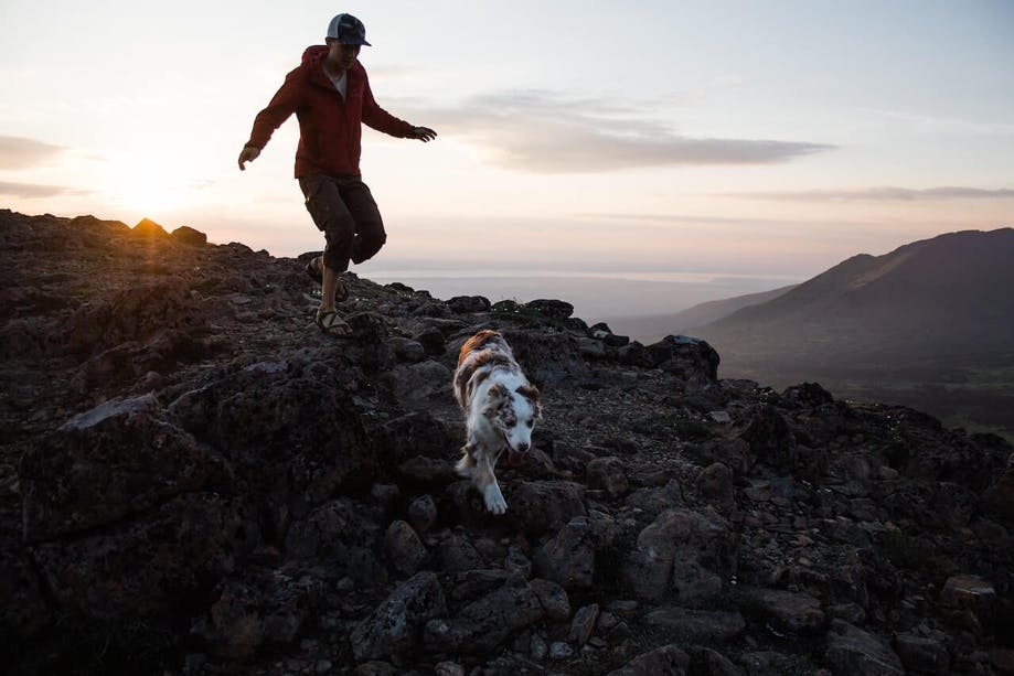 Man going on an active hike with his dog