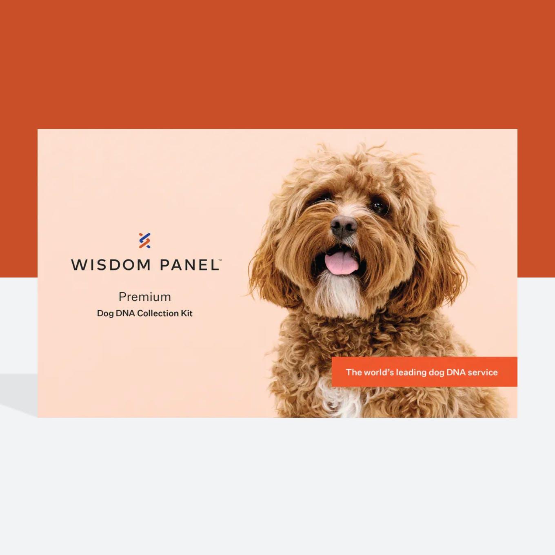 Wisdom Panel Premium dog DNA test collection kit