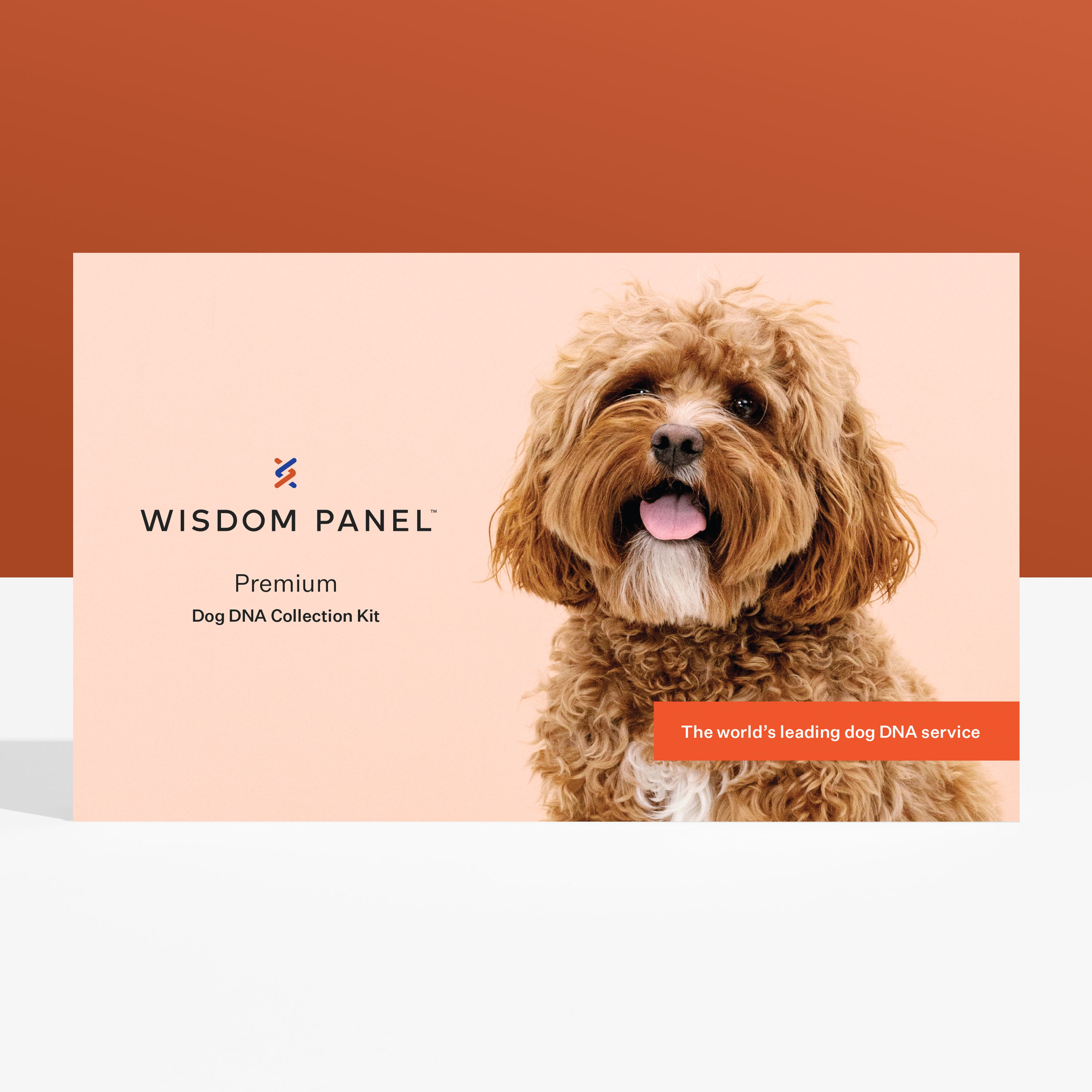 Wisdom Panel Premium DNA test for dogs collection kit
