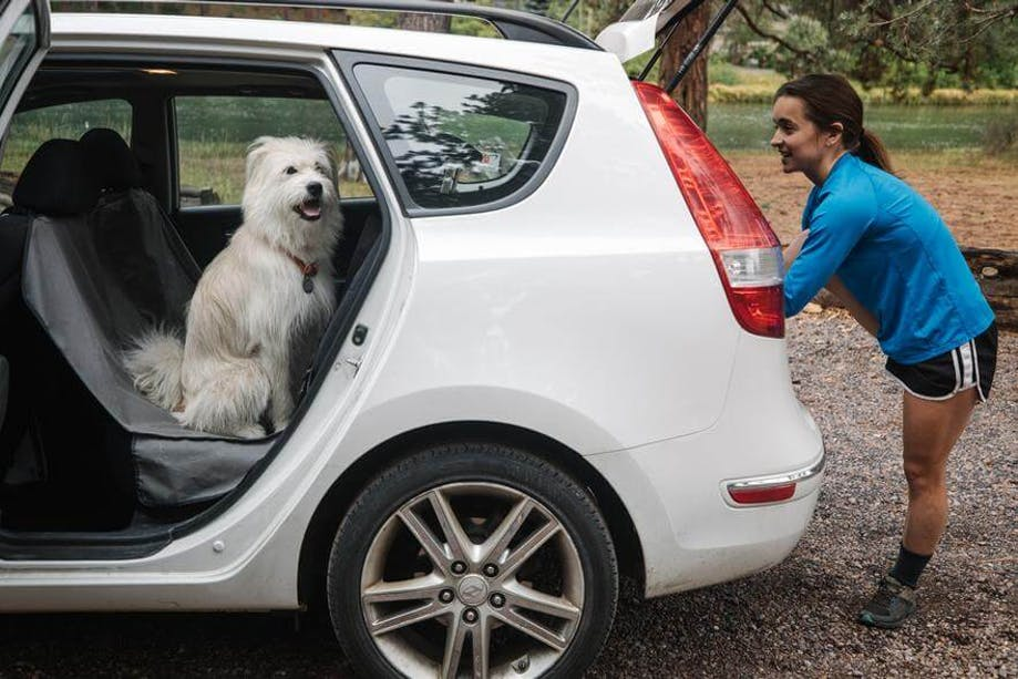 Woman loading her dog into her car