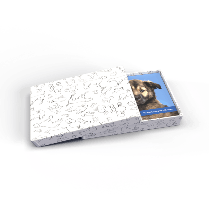 Giftbox covered in dog images