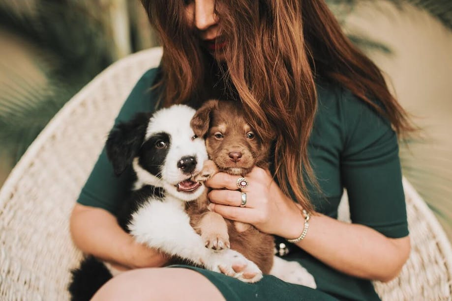 Woman cudlling with two pups