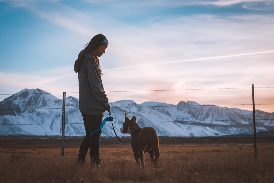 Parent and their pup on a winter dog walk