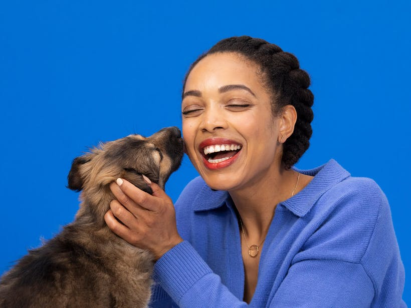 Puppy licking woman's face