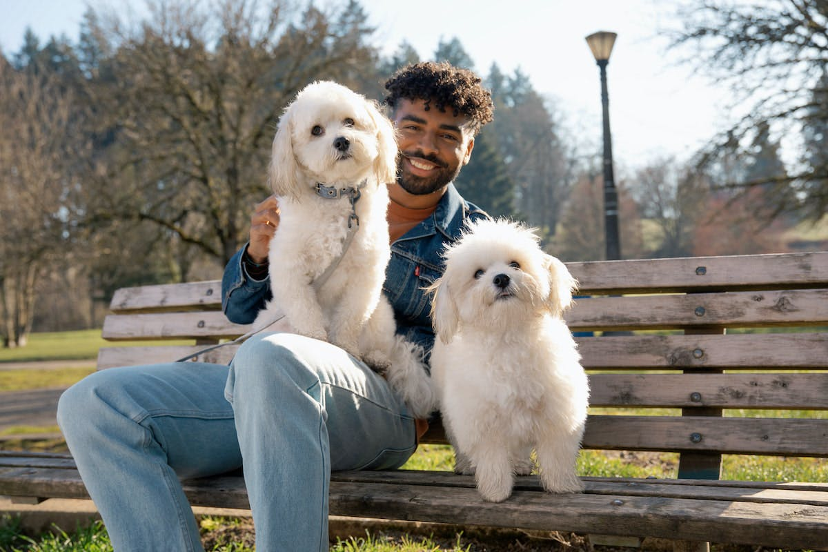 Man sitting on a bench with his dogs