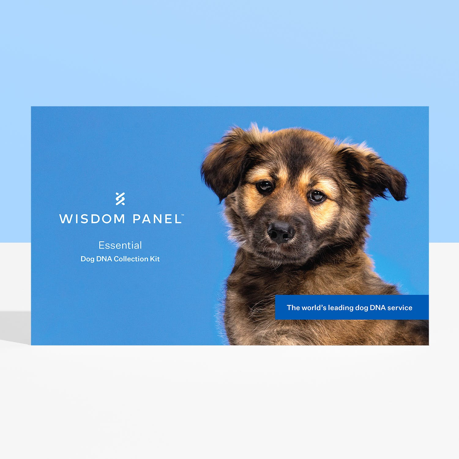 Wisdom Panel Essential DNA test for dogs collection kit
