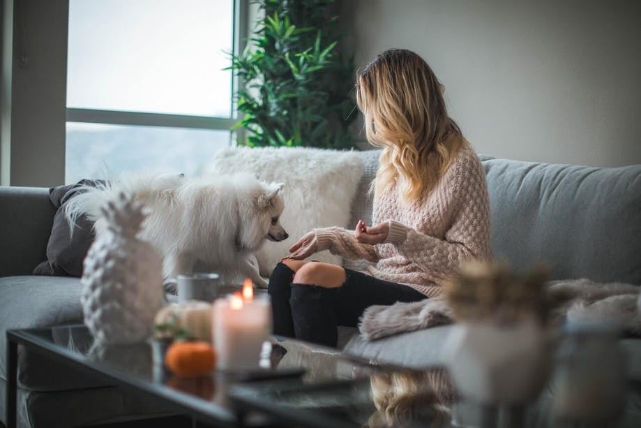 Woman feeding her small dog treats in her apartment