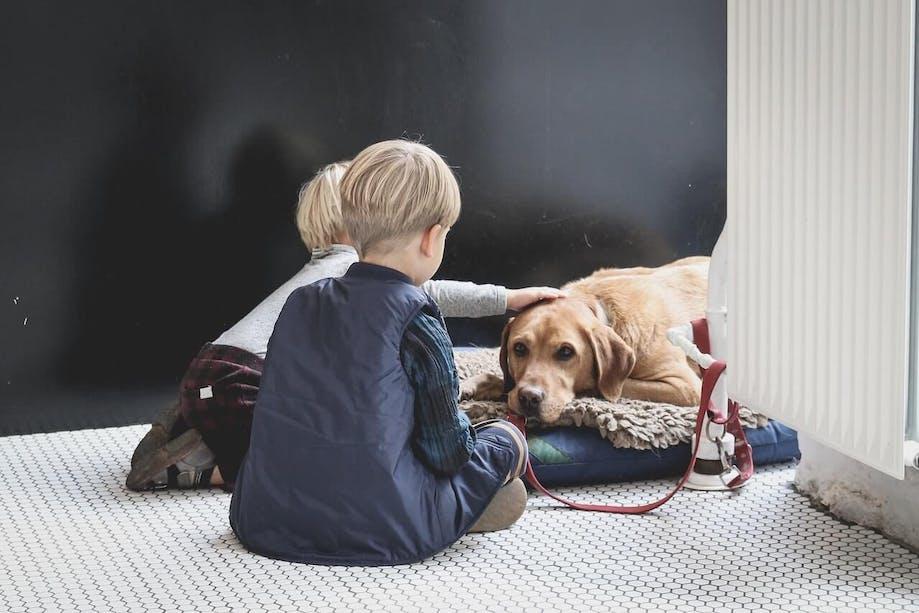 Kids petting their dog