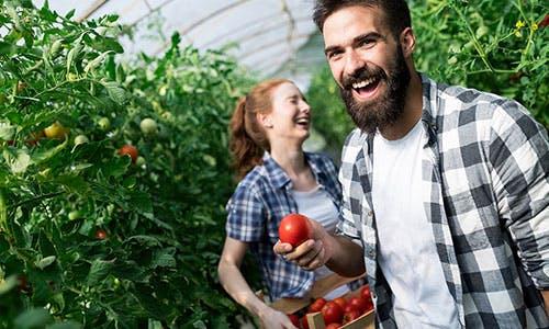 Comment trouver du travail en agriculture ?