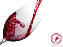WiziFarm - La Wine Tech