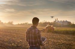 Tout savoir sur la diversification agricole