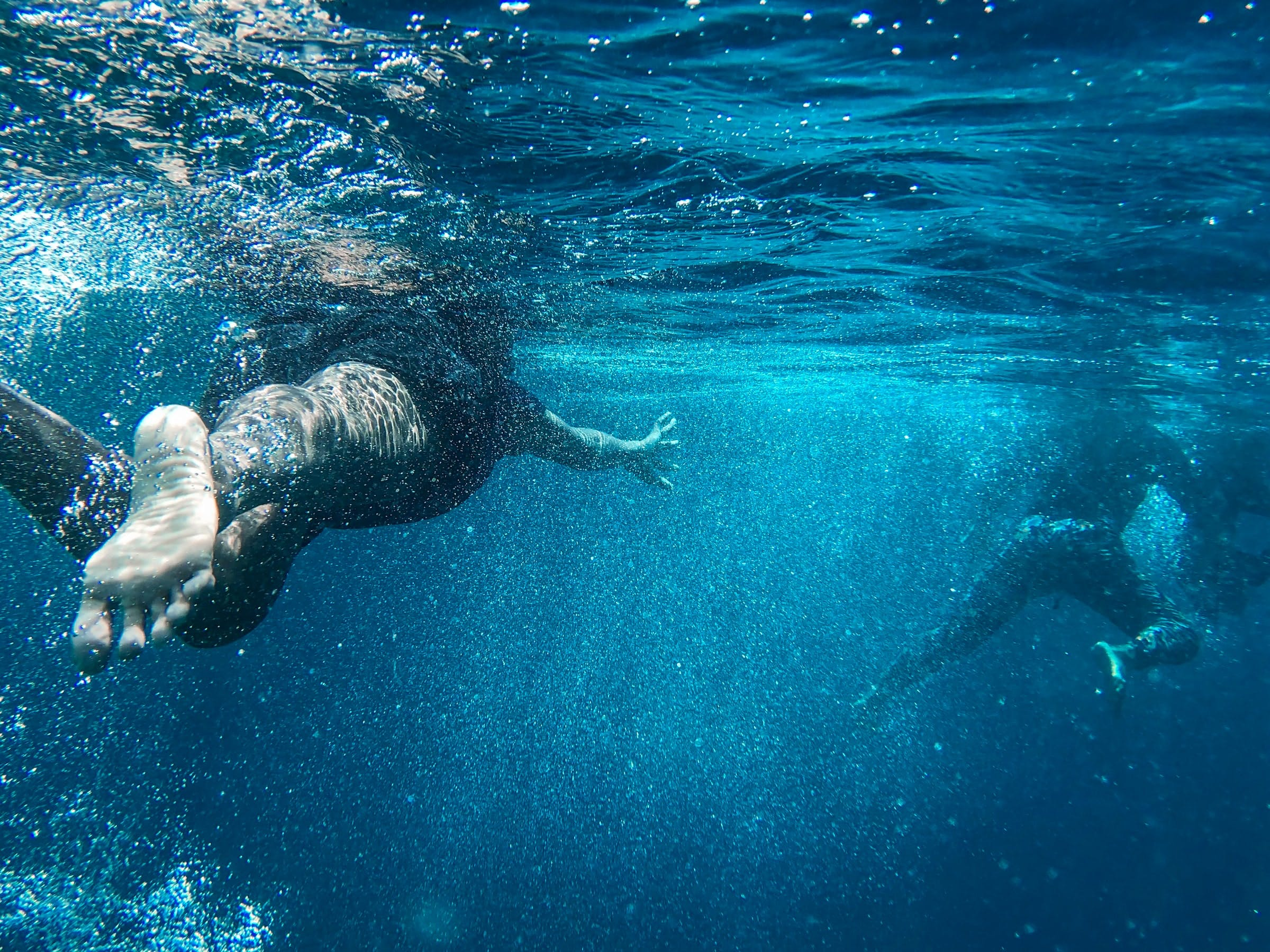 Underwater photo of two people swimming away.
