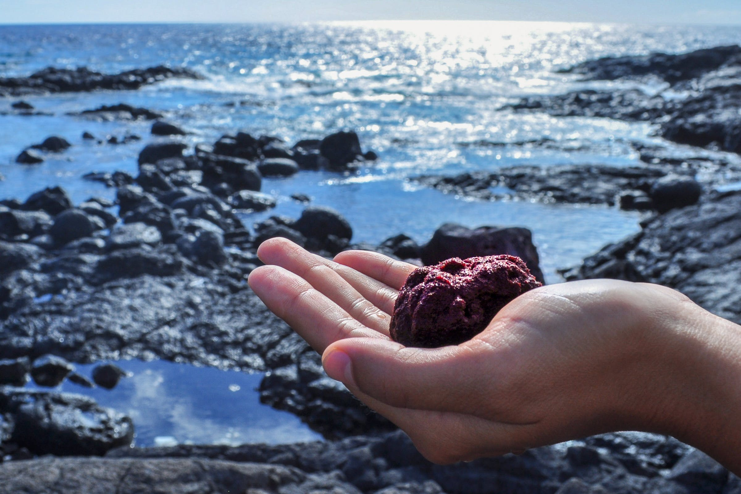 A hand holds a red mound in front of the ocean.