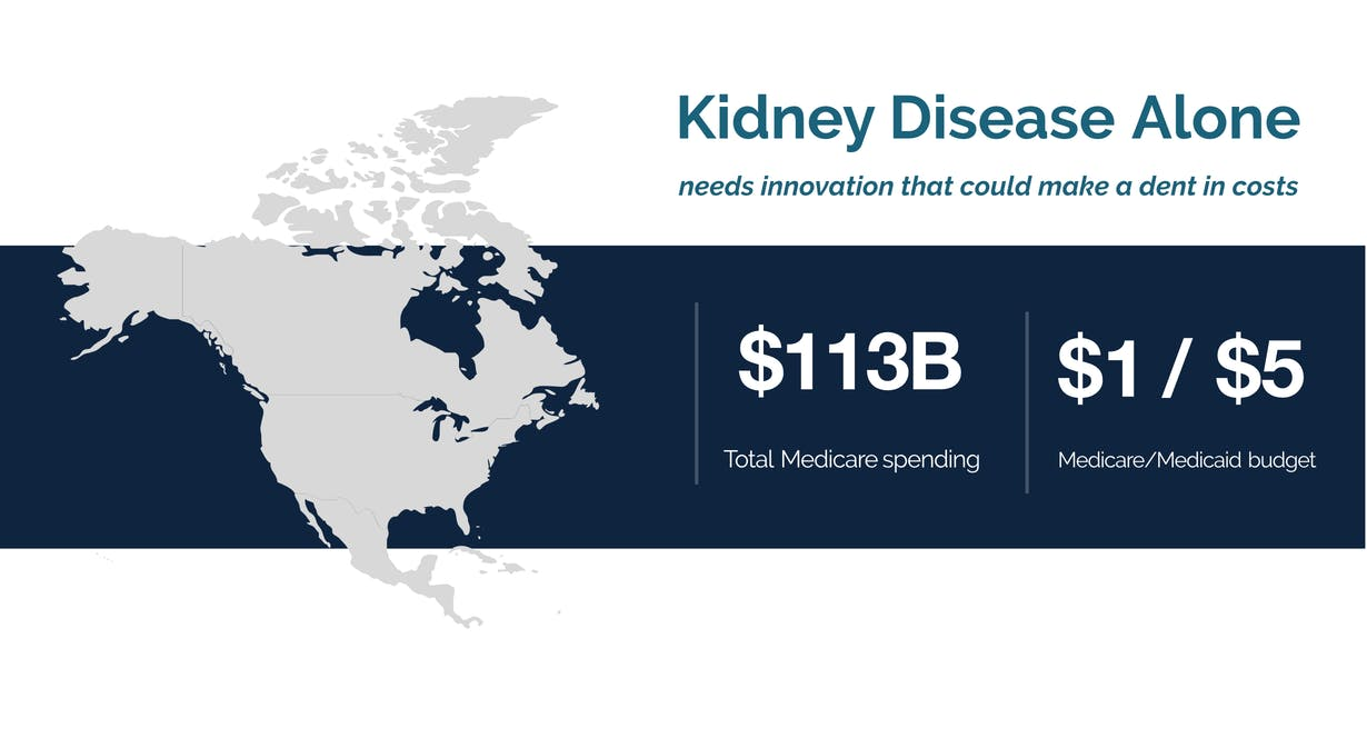 Kidney Disease Alone needs innovation that could make a dent in costs total medicare spending $113 billion $1 of every $5 medicare/medicaid budget