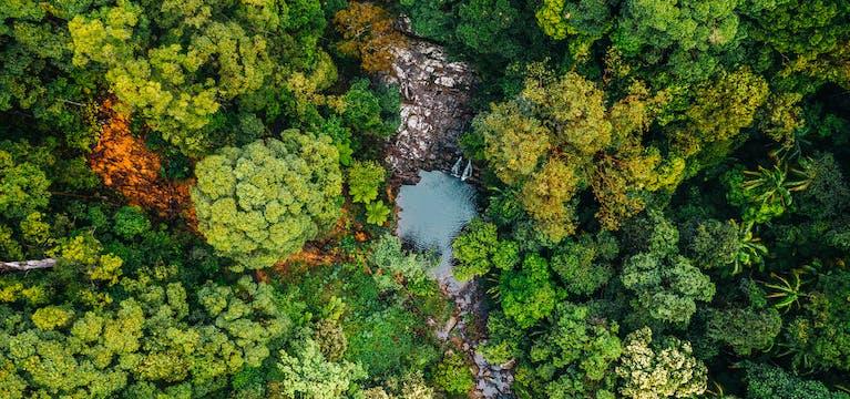 Aerial view of the rock pools in Currumbin Valley, Queensland.