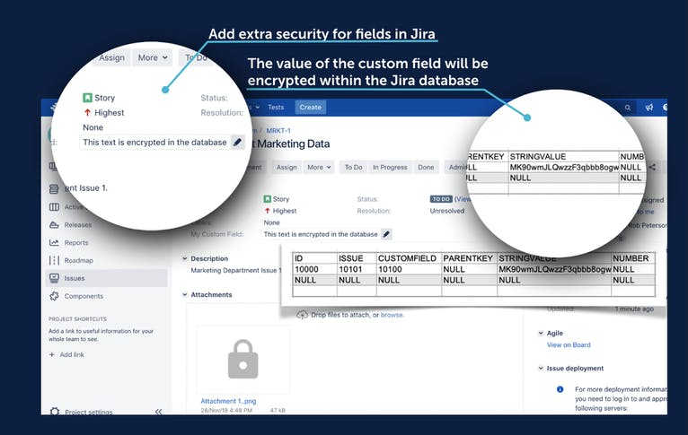 Product screenshot of Encrypting custom fields