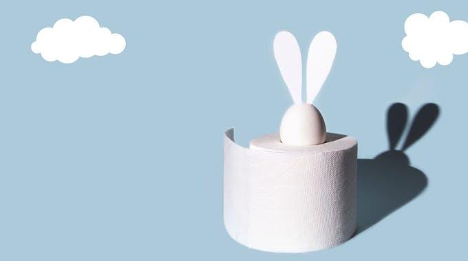 Weißes Osterei mit Hasenohren in einer Rolle Toilettenpapier