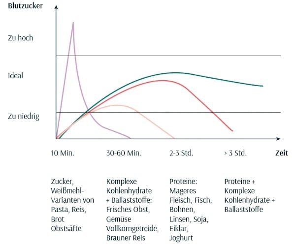 proteine-ballaststoffe-kohlenhyrdate-energie