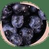 Wechseljahre Dunkle Beeren Gehirn Smoothie