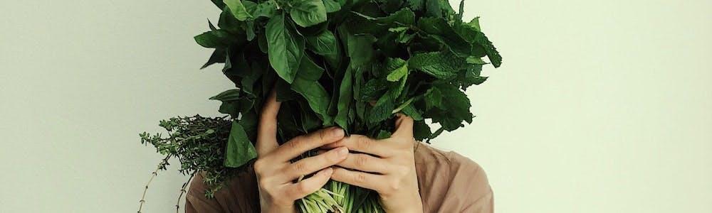 blähungen verdauung menopause
