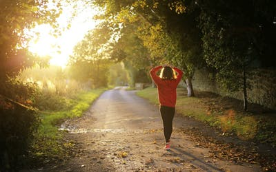 stress-atmung-adaptogene-wechseljahre-hormone