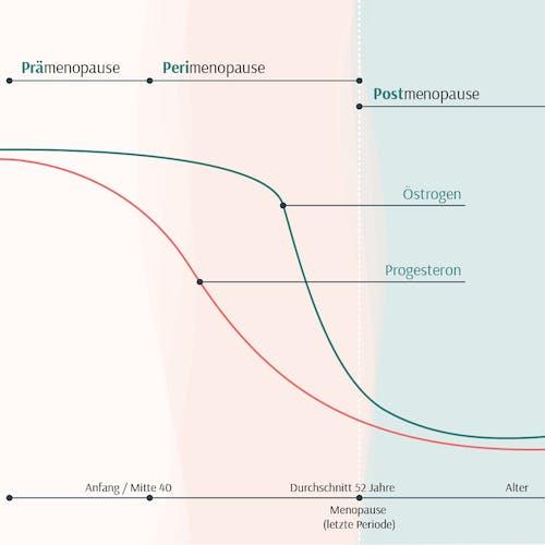 oestrogen-progesteron-hormone-wechseljahre-perimenopause-sinken