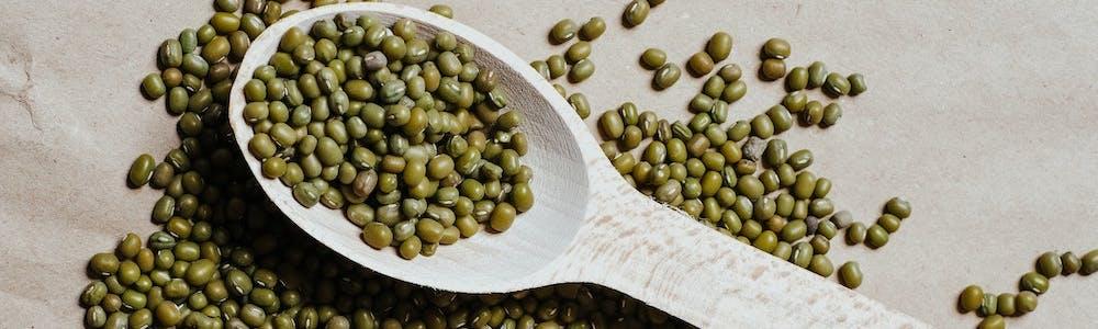 Mungbohnen Puffer mit Spinat-Kohlrabi-Apfel-Salat Rezept Proteine