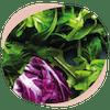 Wechseljahre pflanzliche Antioxidanten Gehirn Smoothie