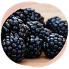 Wechseljahre Chia Brombeer Pudding Omega 3 Rezept