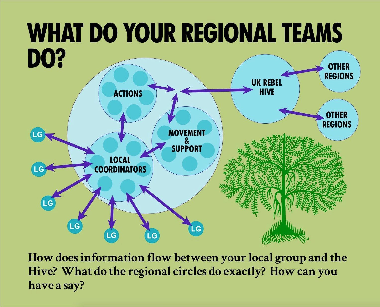 What do your Regional Teams do? How does information flow between your local group and the Hive? What do the regional circles do exactly? How can you have a say?