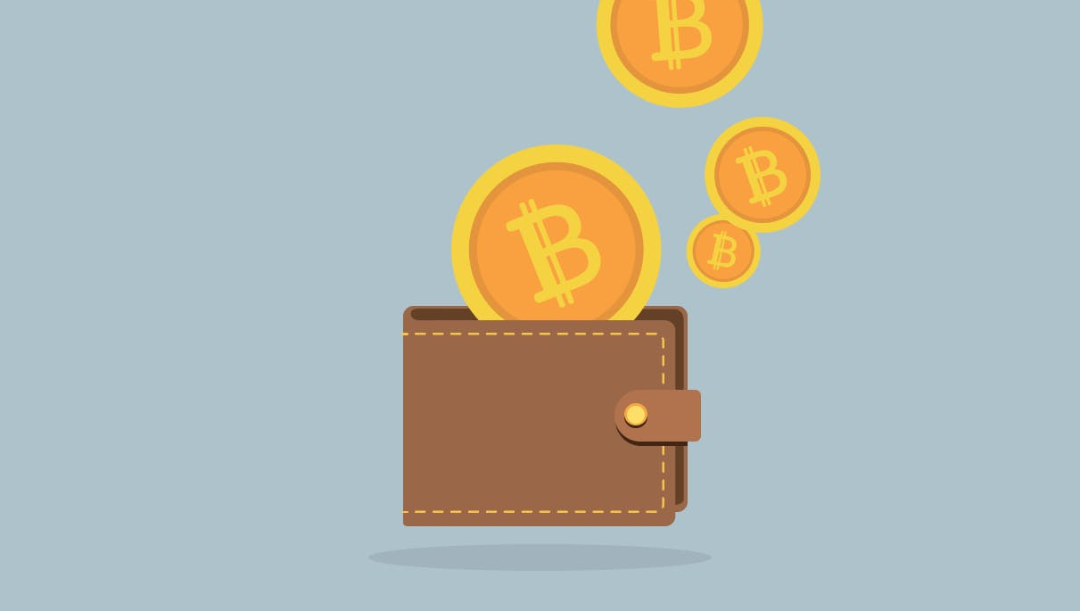 Introduction to Bitcoin Wallets