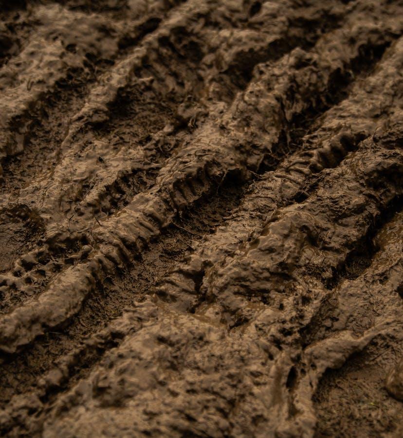 EWS 9 Tweed Valley - Mud