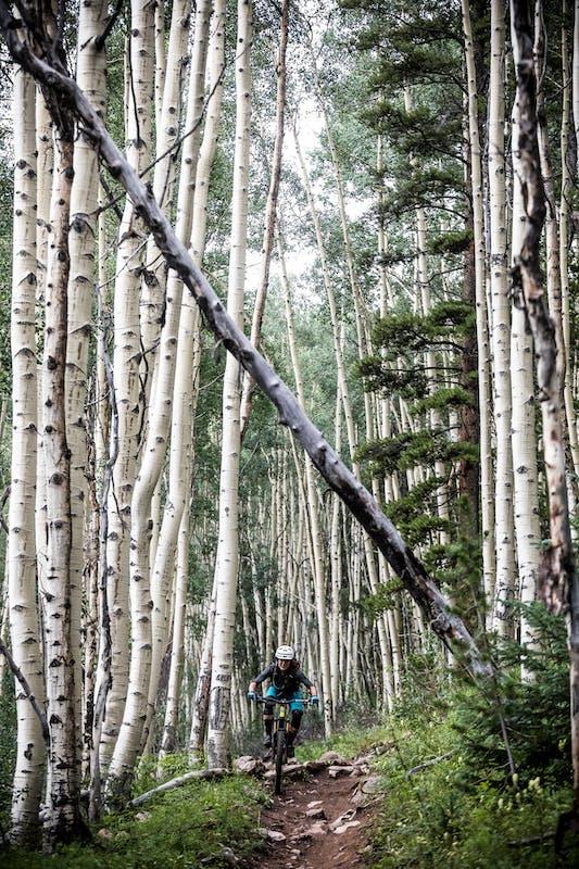Nichole Baker riding through a large aspen grove.