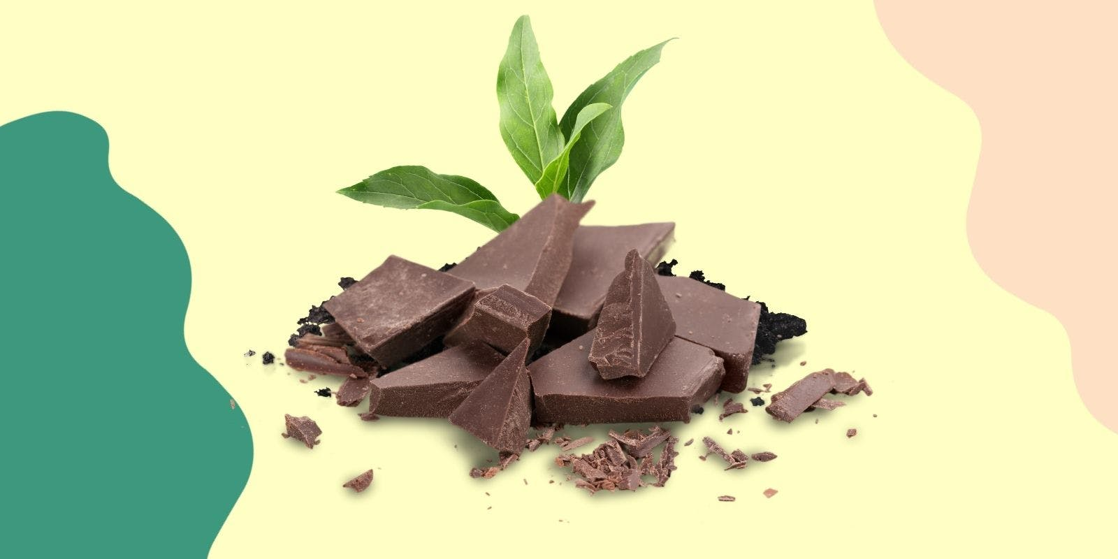 Eco-Friendly & Ethical Chocolate
