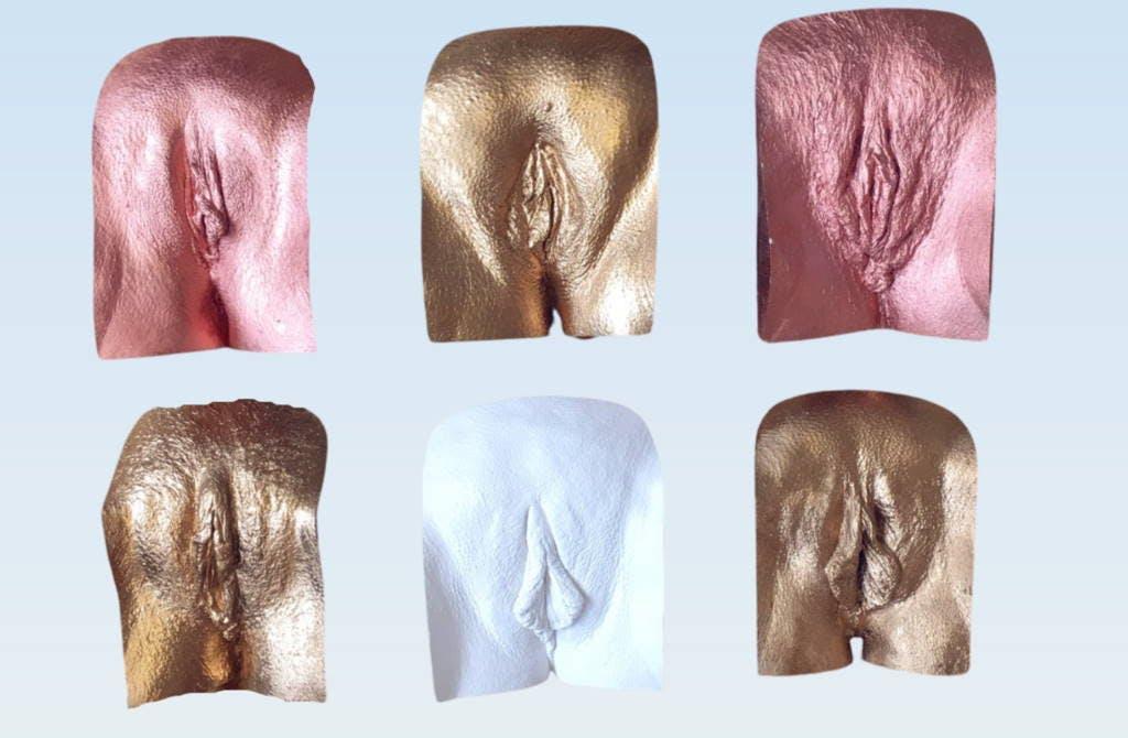 The Vulva Diversity Project Castings